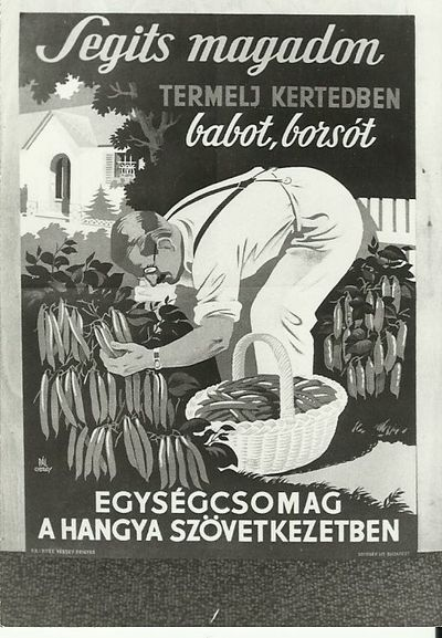 Segíts magadopn, termelj kertedben babot, borsót