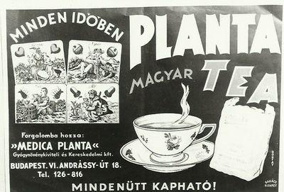 PLANTA Magyar Tea