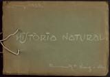 Escola Milà i Fontanals. Quadern de treball alumna AnaMaria Roig/ redaccions bombardeig 1938