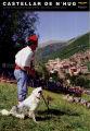 Castellar de n'Hug, Concurs Internacional de Gossos d'Atura, festa local d'interès turístic, Catalunya