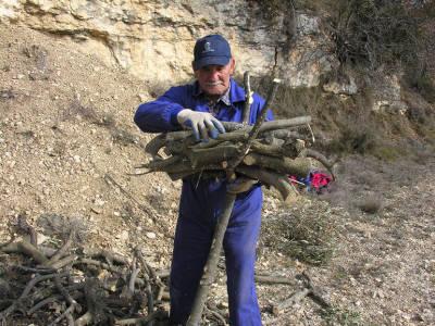 Justo Sorando Gómez, carboner,construint una carbonera  de llenya, pas.1