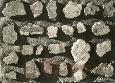 Inscription from Rome, Memoria Apostolorum ad Catacumbas - ICVR V, 13081.a