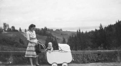 Fra riksveg 120 ved Skjønberg. Utsikt mot Nordbydalen. Mor med barnevogn