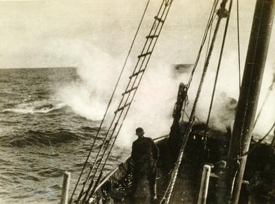En helt i sitt yrke - hvalskytter Lars Faen Andersen