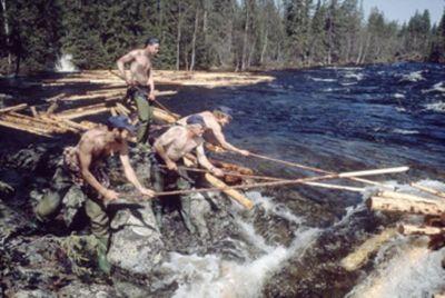 Tømmerfløyting