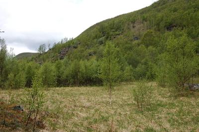 Kamsletta - Kjågosasjalga, Spansdalen