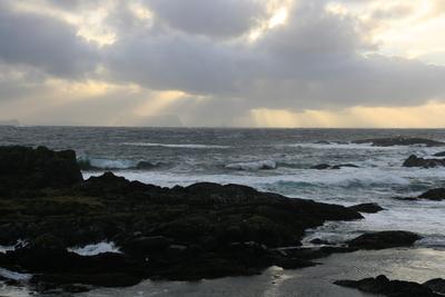 Nærøya