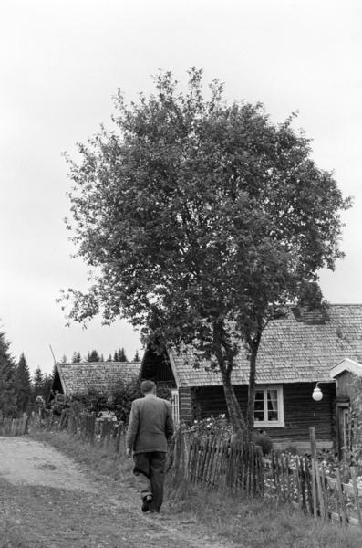 Velkommen til Prøysenvandring langs Præstvægen