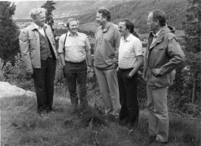 Interessentane i Tottenprosjektet i 1981.