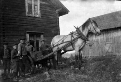 Fem personer rundt hest med kjerre i Bækkeli