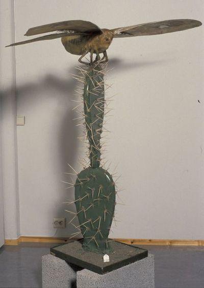 Sommerfuglen og Kaktusen