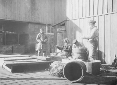 Lineegning i Kiberg ca 1900