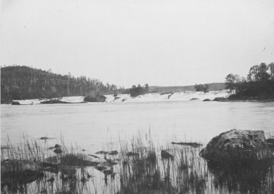 Skogfossen i Pasvikdalen