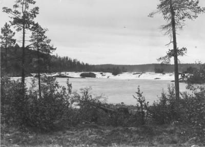 Skogfoss (Mennikafoss) i Pasvikdalen.