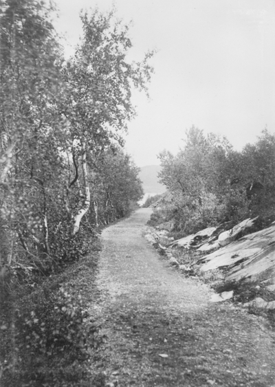 Veien til Soldatbukta, Kirkenes ca 1894