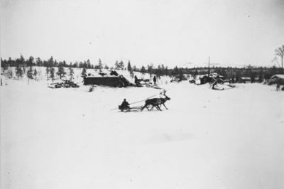 Reinkjøring ved Øvre skolteby, Salmijärvi.