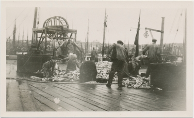 Fiskearbeid på en av Brodtkorbs kaier i Nordre Våg