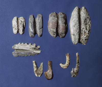 Kotedalen - steinalderbuplassen ved Fosnastraumen