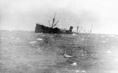 40 hvalfangere omkom