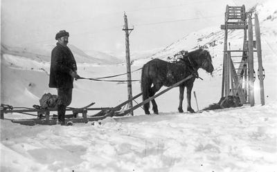 Hestar og menn ved Hallingskeid