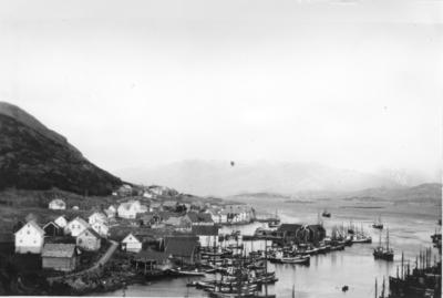Fiskeflåten i Kalvåg hamn