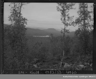 Utsikt mot Skoganvarre