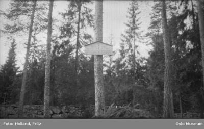 Tavlen ved gravene fra 1600-tallet i Nordbergskogen.