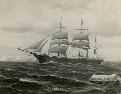 Første sørlending i Antarktis