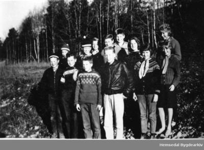 Framhaldsskuleelevar i Hemsedal i 1962