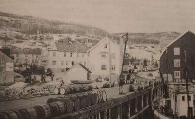 Norske styrker går i land på Sjøvegan 1940