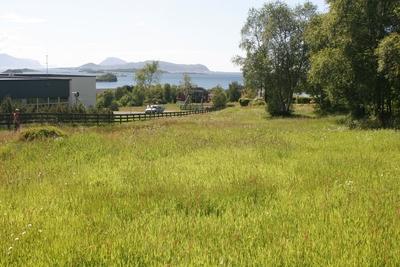 Gravfelta ved fjellfoten i Søvika