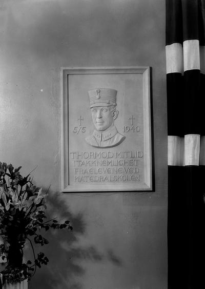 Kapt. Mitlid,s relief, Katedralskolen