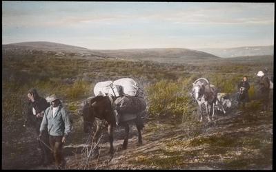 Fra foredragsrekken Landmålerlivet i Finnmark v/Axel Printz : Innover vidda