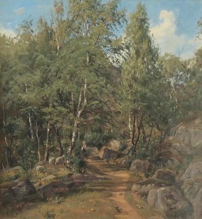 Ovenfor Skogsfjorden