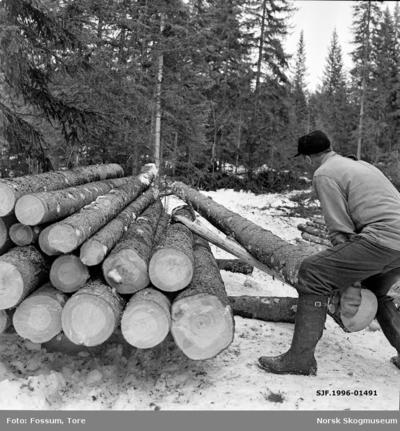Jørgen Larsen (1919-1988) fra Hernes i Elverum lesser grantømmer i Stavåsen vinteren 1971