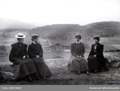gruppe med fire kvinner i et landskap