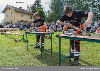 To elever fra Sønsterud skogskole (Solør videregående skole