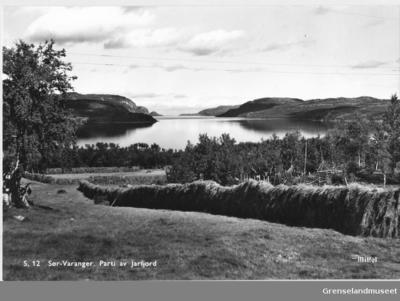 Parti av Jarfjord