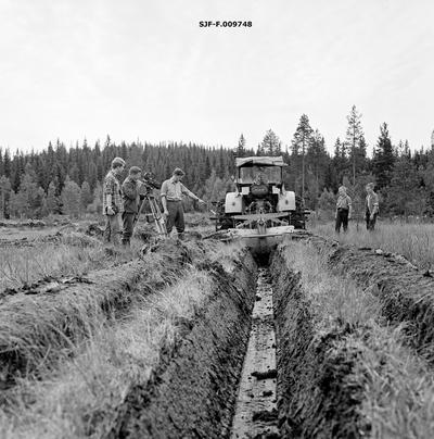 Myrgrøfting med såkalt «Vikeid-plog» i Bergeberget i Elverum sommeren 1964