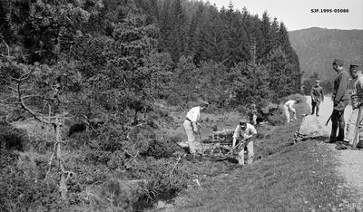 Grøftegraving under skogrekruttskolen på Ulven i Os i Hordaland sommeren 1932