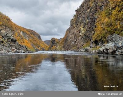 Elvelandskap fra Kautokeinoelva/Guovdageaineatnu i Finnmark