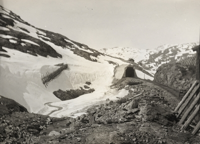 Bergensbanen nær Sæltuft
