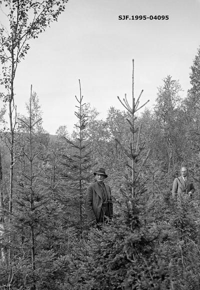 Tidligere skogforvalter Arthur Klerck (1886-1943) og daværende skogforvalter Trygve T