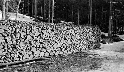Vedstabel med gran- og furuved i Borgerudskogen på Sokna i daværende Norderhov kommune på Ringerike