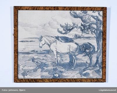 To hester med et tre i bakgrunn