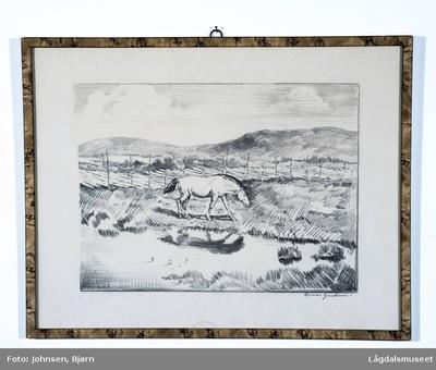 Motivet viser en hest på en vidde