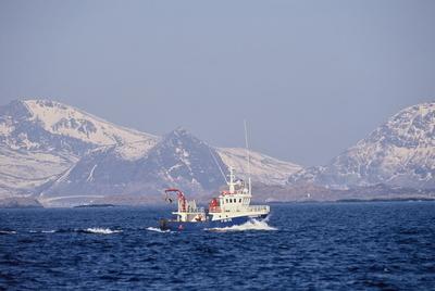 Fiskebåt på havet