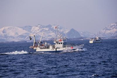 To fiskebåter på havet