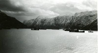 Skip Narvik havn