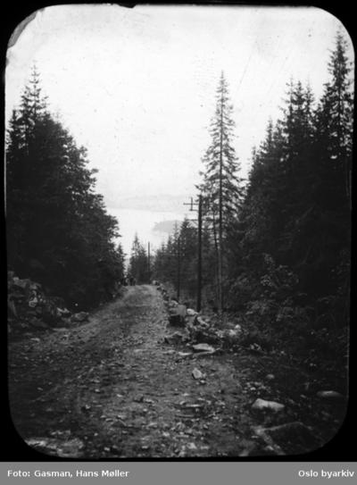 Utsikt langs vei i skogen mot et større vann eller sjø